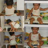 Pronto ! #Aysha Aprendeu a abrir e entrar no armário agr só quer ficar dentro e se reta quando tira ! Acho q ela quer arrumar ele rsrsrs.